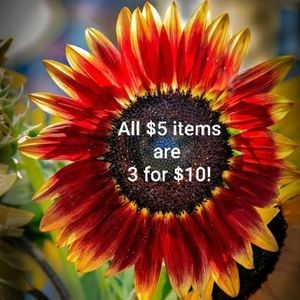 Accessories - All $5 items are 3 for $10!